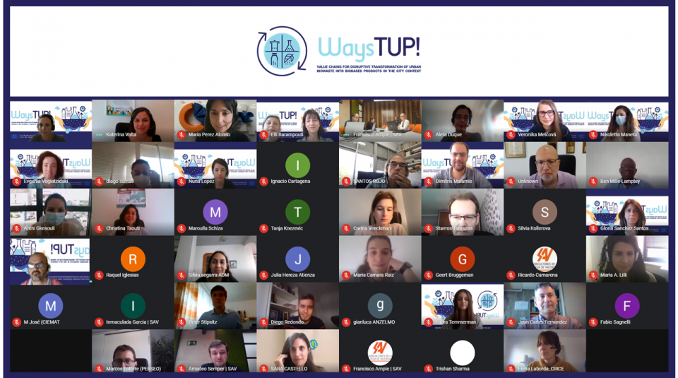 3rd Meeting (online, 27-28 May 2021) print screen (web)