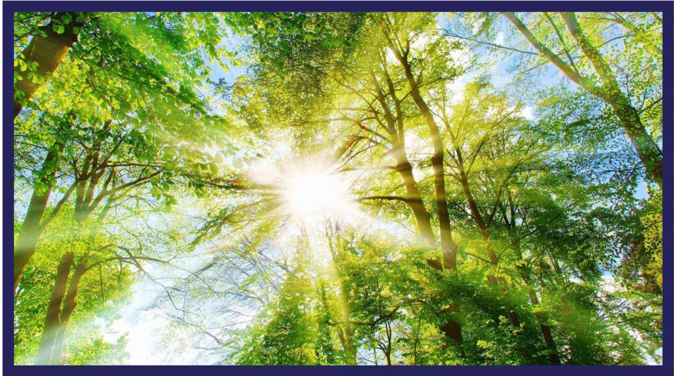Empowering the circular bioeconomy through the EU Green Deal