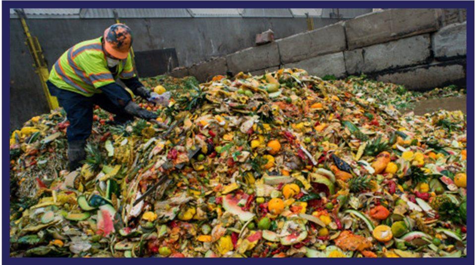 Organic material and biowaste