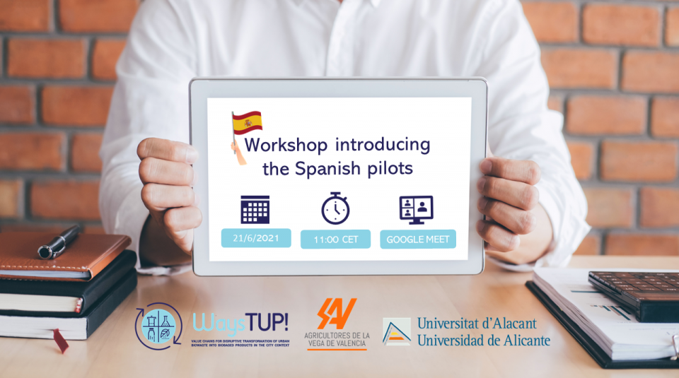 SPANISH pilot workshop (final2)