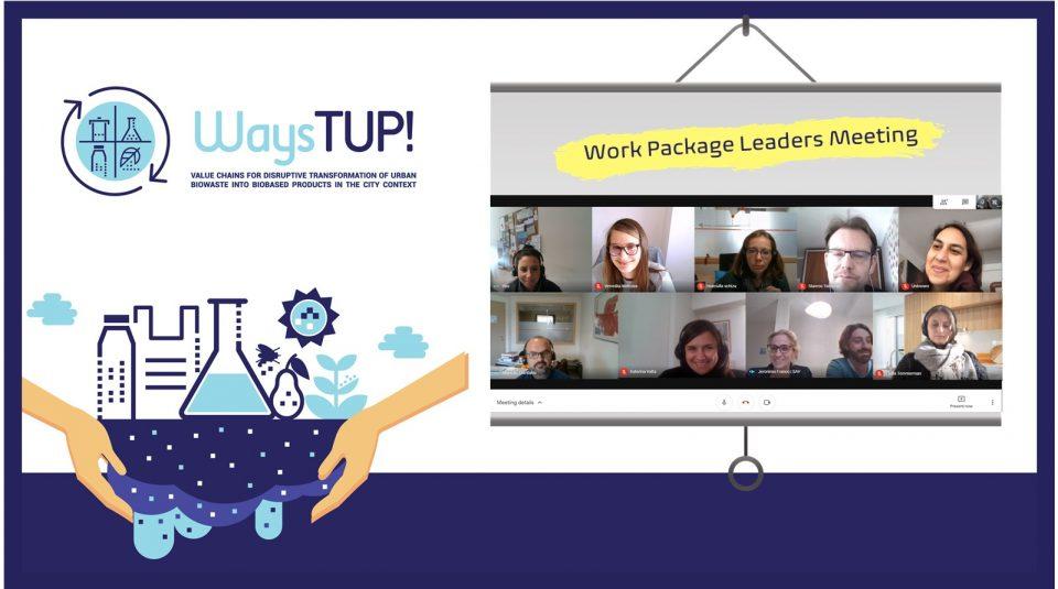 WAYSTUP Work Package Leaders Meeting