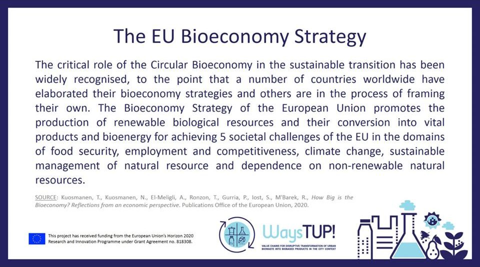 What promotes the Bioeconomy Strategy of the EU